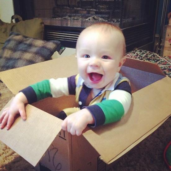 sebastian in box